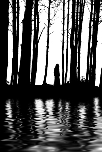 silhouette of woman standing between pine trees behind water reflections